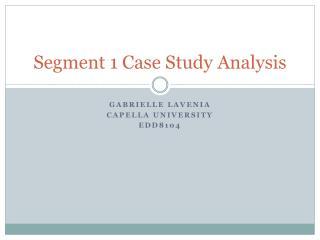 Segment 1 Case Study Analysis