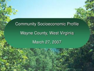 Community Socioeconomic Profile Wayne County, West Virginia March 27, 2007