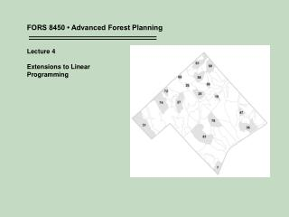 FORS 8450 • Advanced Forest Planning Lecture 4 Extensions to Linear  Programming