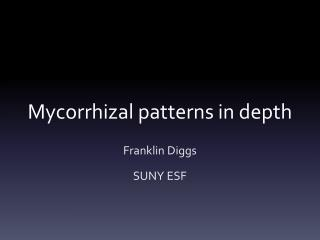 Mycorrhizal patterns in depth