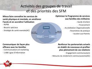 Activités des groupes de travail  et  des priorités  des SFM