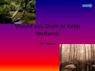 Should you Drain or  Keep  Wetlands