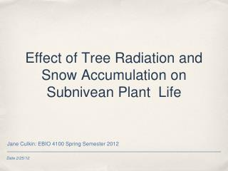 Effect of Tree Radiation and Snow Accumulation on Subnivean Plant  Life