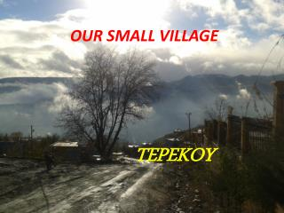 OUR SMALL VILLAGE