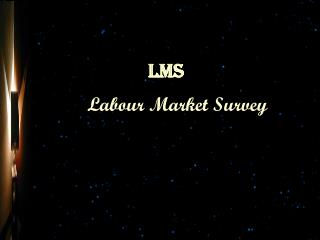 Labour Market Survey