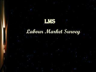 Labour Market Survey