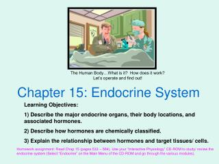 Chapter 15: Endocrine System