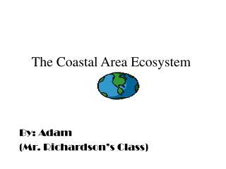The Coastal Area Ecosystem