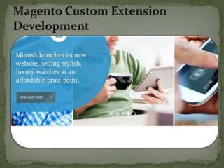 Magento Custom Extension Development-www.nr10.com