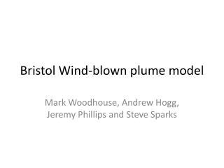 Bristol Wind-blown plume model