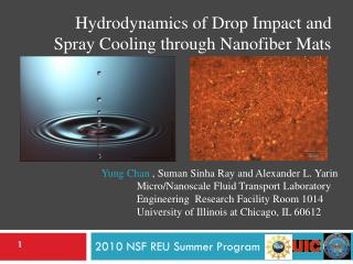2010 NSF REU Summer Program