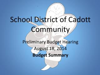 School District of Cadott Community