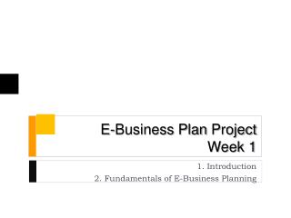 E-Business Plan  Project Week 1