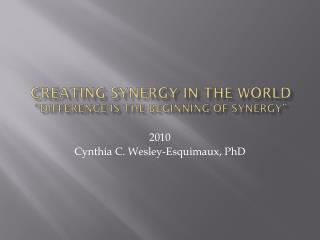 creating synergy in the world  �Difference is the Beginning of synergy�