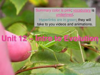 Unit 12 – Intro to Evolution