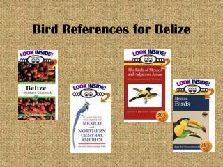 Bird References for Belize