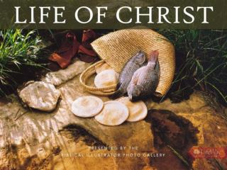 Life Of Christ SAMPLE