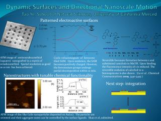 Patterned electroactive surfaces