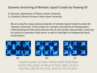Dynamic Anchoring of  Nematic  Liquid Crystals by Flowing Oil