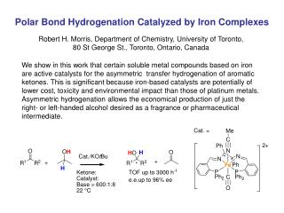 Polar Bond Hydrogenation Catalyzed by Iron Complexes