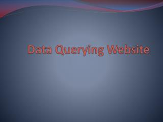 Data Querying Website
