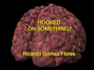HOOKED  ON SOMETHING    Ricardo G mez Flores