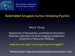 Automated  Amygdala Surface Modeling Pipeline