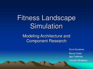 Fitness Landscape Simulation