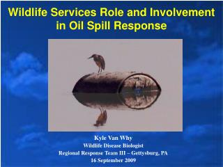 Wildlife Services Role and Involvement in Oil Spill Response