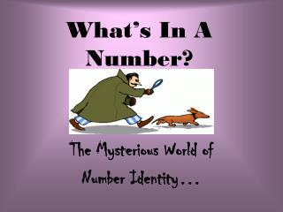 What�s In A Number?
