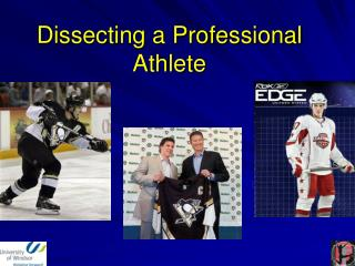 Dissecting a Professional Athlete