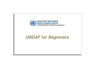 UNDAF for Beginners