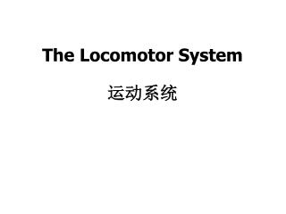 The Locomotor System  运动系统