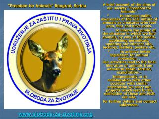 Sloboda za Zivotinje   Freedom 4 animals