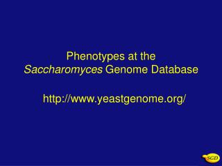 Phenotypes at the  Saccharomyces  Genome Database