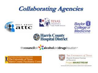 Collaborating Agencies