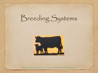 Breeding Systems
