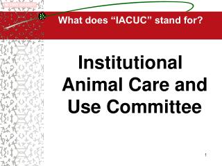 IACUC Office