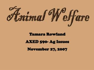 Animal Welfare - Tamara Rowland PPT