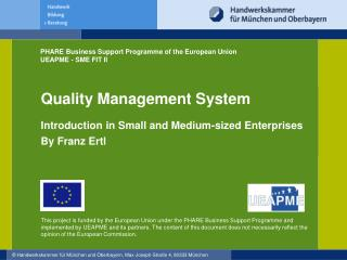 Quality Management System Introduction in Small and Medium-sized Enterprises By Franz Ertl