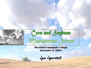 Corn and Soybean  Management Issues
