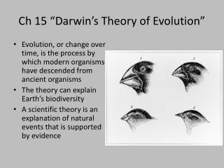 Ch  15 �Darwin�s Theory of Evolution�