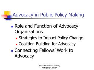 Advocacy in Public Policy Making
