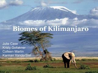 Biomes of Kilimanjaro
