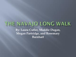 The Navajo Long Walk