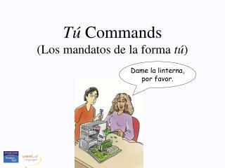 T  Commands
