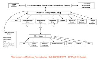 Local Resilience Forum (Chief Officer/Exec Group)