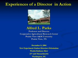 Experiences of a Director  in Action