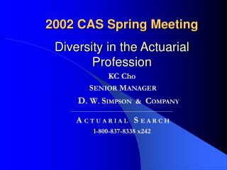 2002 CAS Spring Meeting Diversity in the Actuarial Profession KC Cho S ENIOR  M ANAGER