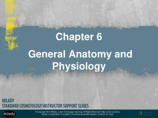 Chapter 6  General Anatomy and Physiology